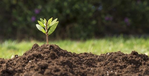 خاک زراعی و مرتعی