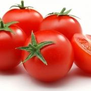 مرجع تشخیص گوجه فرنگی گلخانه ای صادراتی